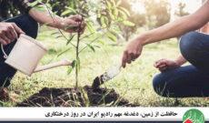 حافظت از زمین، دغدغه مهم رادیو ایران در روز درختکاری